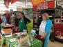 Sainsbury October fundraising