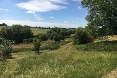 SHn-Family-walk-landscape