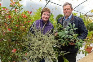 Wyatts Plant & Garden Centre