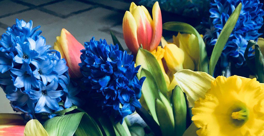 Spring-flowersFI